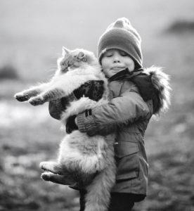 Кот и мальчик-080118. Шолохово. Полесск-mini