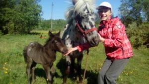 Отдых с детьми в питомнике пони. Калининград.