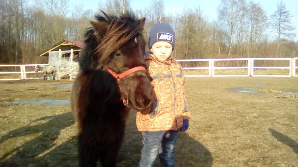 Отдых с детьми. Полесск. Прогулки с Пони.