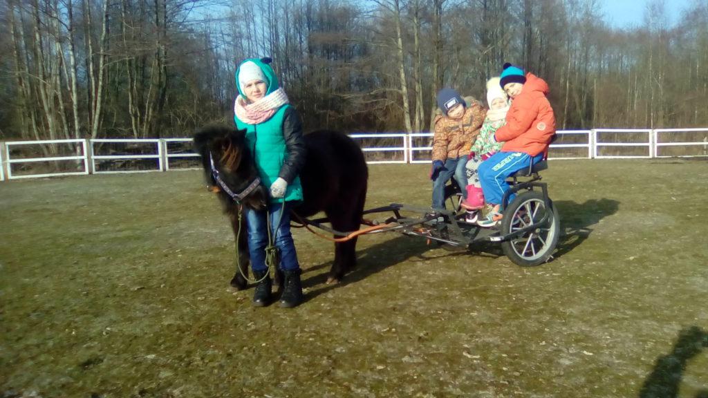 Отдых с ребенком. Калининград. Пони ферма.