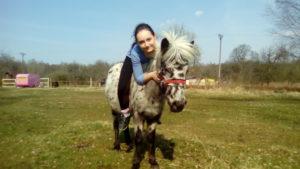 Верховая езда на пони. Полесск. Обучение детей верховой езде на пони. Калининград