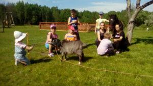 Калининград. Экскурсия детей на пони ферму.
