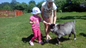 Отдых детей на пони ферме. Полесск.