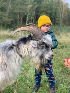 фото сесския с козликом. Калининград