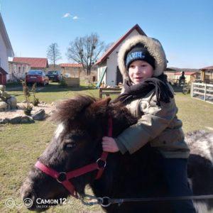 Пони Ирис. Полесск. Детский отдых