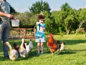 Детский отдых в Полесске